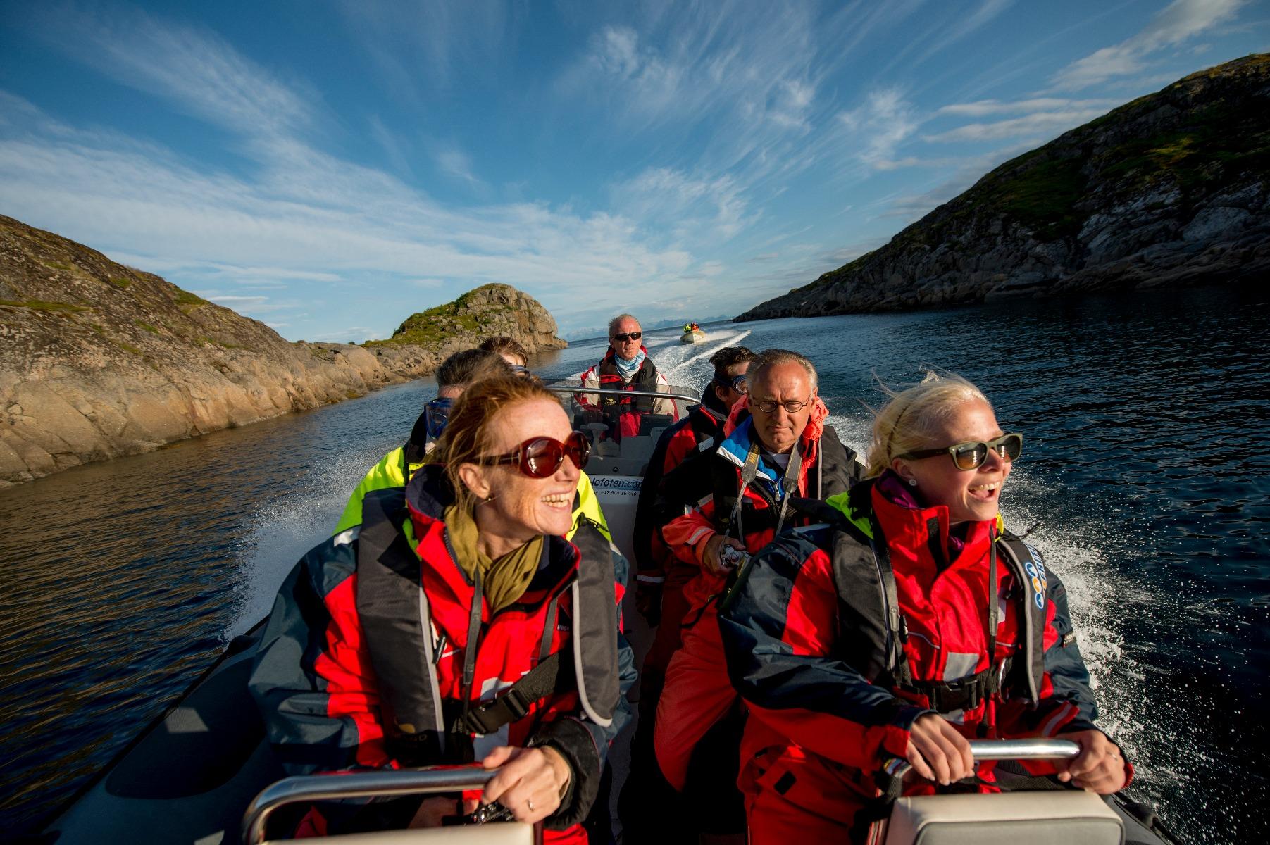 Bådsafari med mulighed for at at se hvaler, sæler og fugle