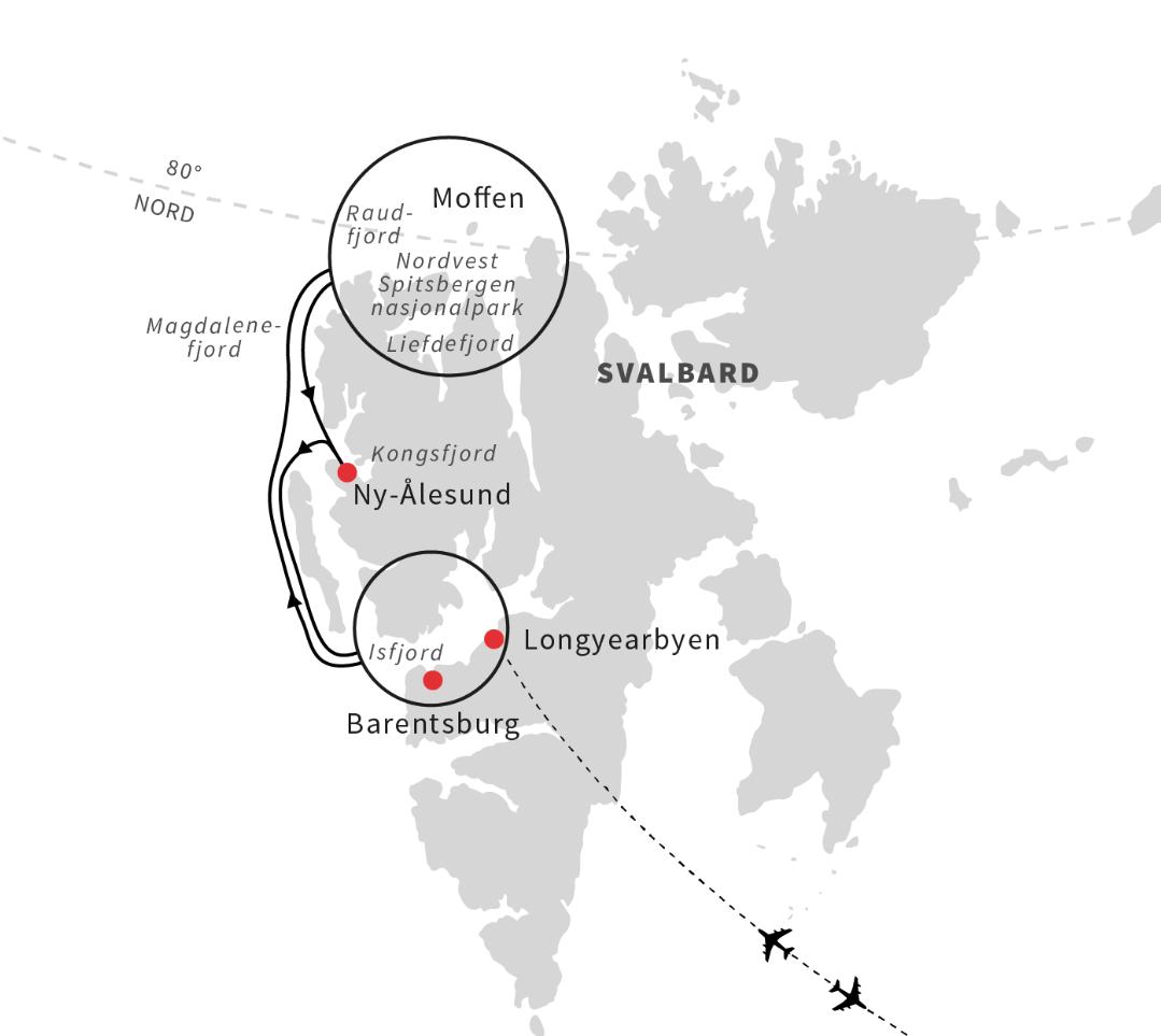 Svalbard - i isbjørnens rige 6 dage