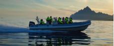 Vesterålen og Lofoten i RIB med Hurtigruten - Ruby Rejser