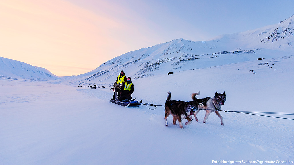 Hundeslædekørsel i foråret på Svalbard