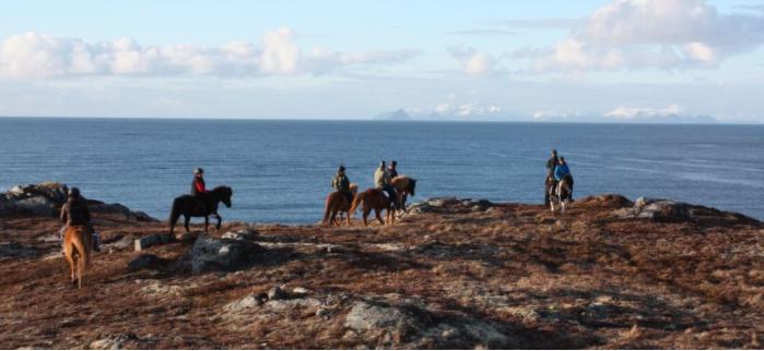 9D Lofoten til hest (Svolvær til Stamsund) - Ruby Rejser