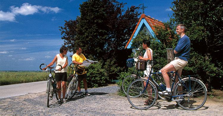 Cykelferie i Belgien