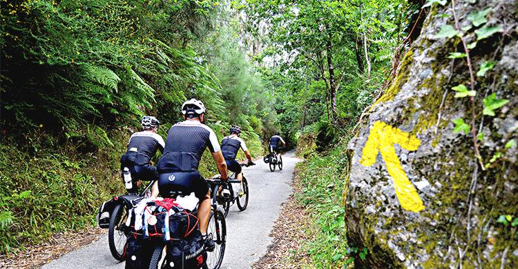 Caminoen - cykling