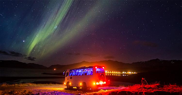 Nordlysudflugt på Island