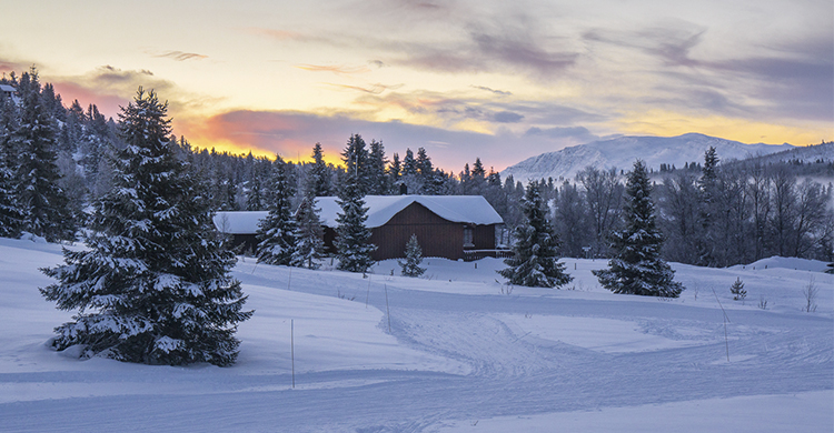 Mysuseter ski