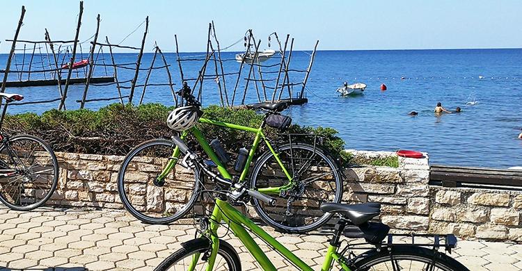 Cykler ved kysten