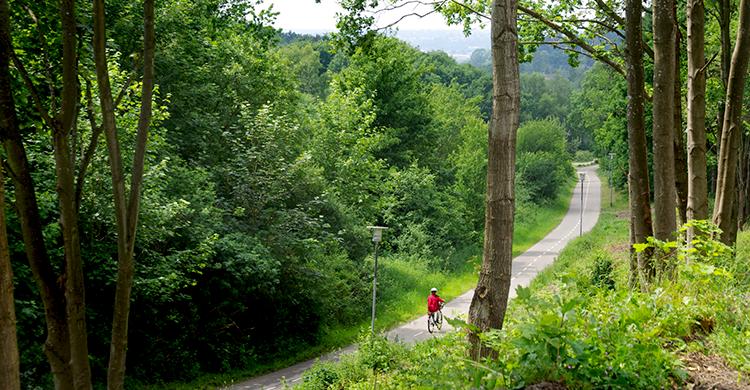 Cykelsti naturskønne Nordsjælland