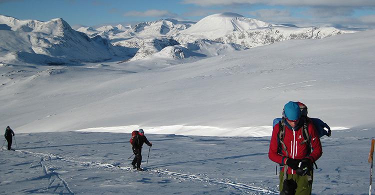 Langrendsløbere i Jotunheimen