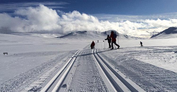 Langrendsspor i Norge