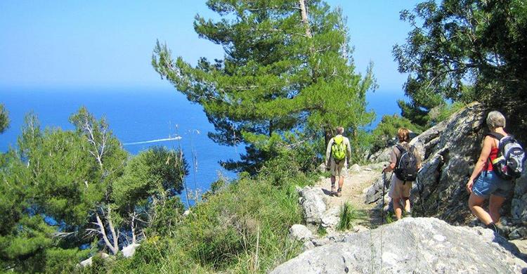 Mallorca vandretur